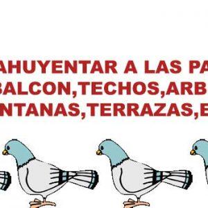 Veneno para palomas casero Ahuyentarlas